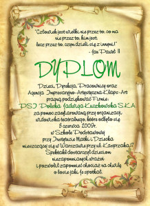 Dyplom_Klaps_Art_3.06.2009