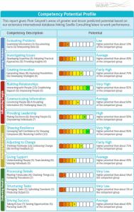 raport profil potenc eng